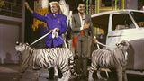 """Auch in Deutschland werden Siegfried und Roy für ihren Erfolg gefeiert. Gerne kommen sie in ihre Heimat zurück. 1987 treten sie mit zwei weißen Tigern in der Show von Alfred Biolek """"Mensch Meier"""" auf."""