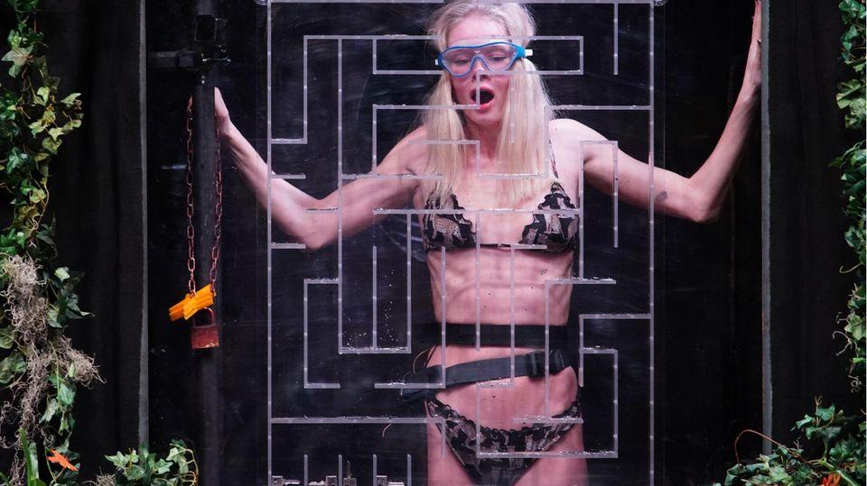 """Das Leiden beginnt: Zoe Saip erfährt am eigenen Leib, dass auch in derDschungelshow von Hürth Schlangen auf die Bewohner warten. Bei der ersten Dschungelprüfung von """"Ich bin ein Star - Die große Dschungelshow"""" müssen drei Kandidaten gemeinsam antreten. Neben Zoe Saip steigen auch Mike Heiter und Frank Fussbroich in Container, die nach und nach geflutet werden."""