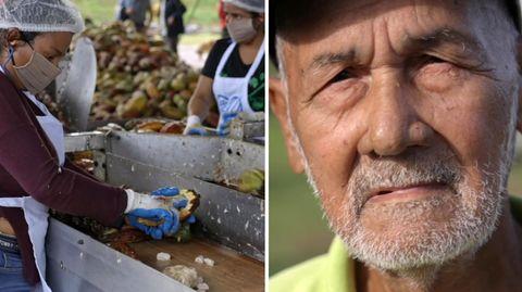 Wie wird unsere FairTrade-Schokolade produziert? Eine Reportage aus Nicaragua