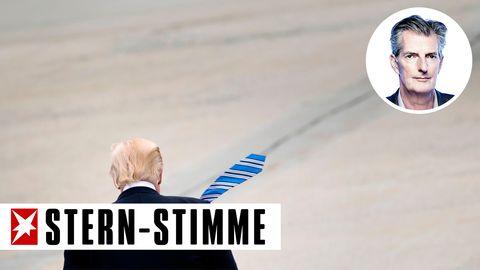 stern Stimme Petzold Trump
