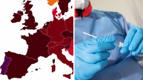 Coronavirus-Verbreitung in Deutschland (Symbol)