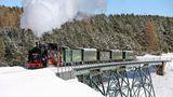 Die gut 18 Kilometer lange Schmalspurstrecke führt auch über dasViadukt Hüttenbachtal