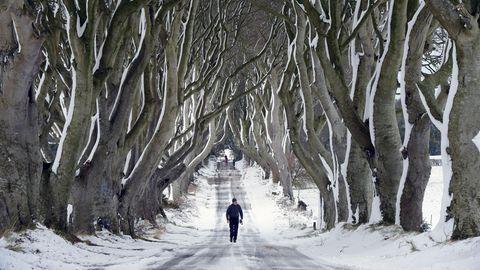 Polarwirbel kollabiert: Warum uns wahrscheinlich ein langer, kalter Winter bevorsteht