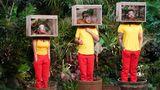 Mehr Tiere, die Kandidaten sehen nicht glücklich aus: Alle drei treten zeitgleich zu ihrer ersten Dschungelprüfung an.