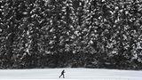 Die Loipe hat dieser Langläufer in der Nähe vonKaltenbrunn bei Garmisch-Partenkirchenfür sich alleine