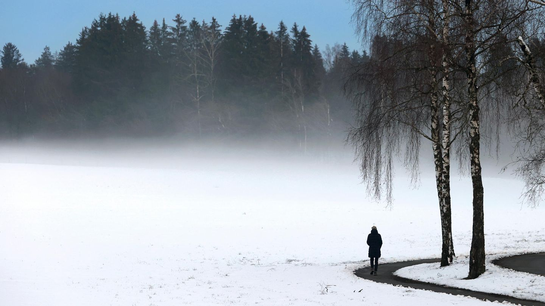 Spaziergang unter einer Birkenallee bei Bad Wörishofen: Aus verschneiten Wiesen steig weißer Nebel empor.