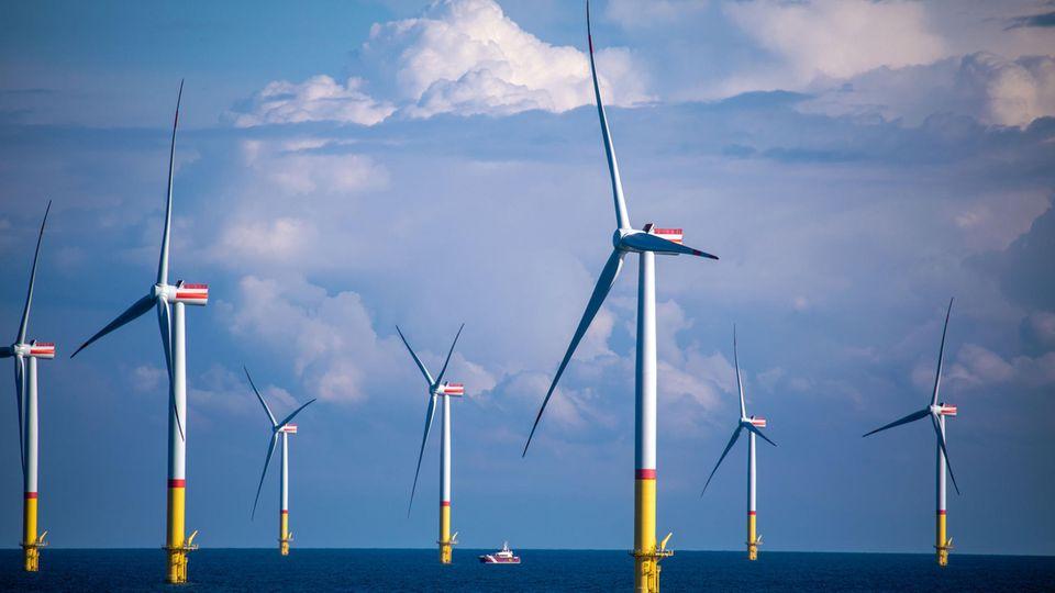 Windräder eines Windparks in der Ostsee