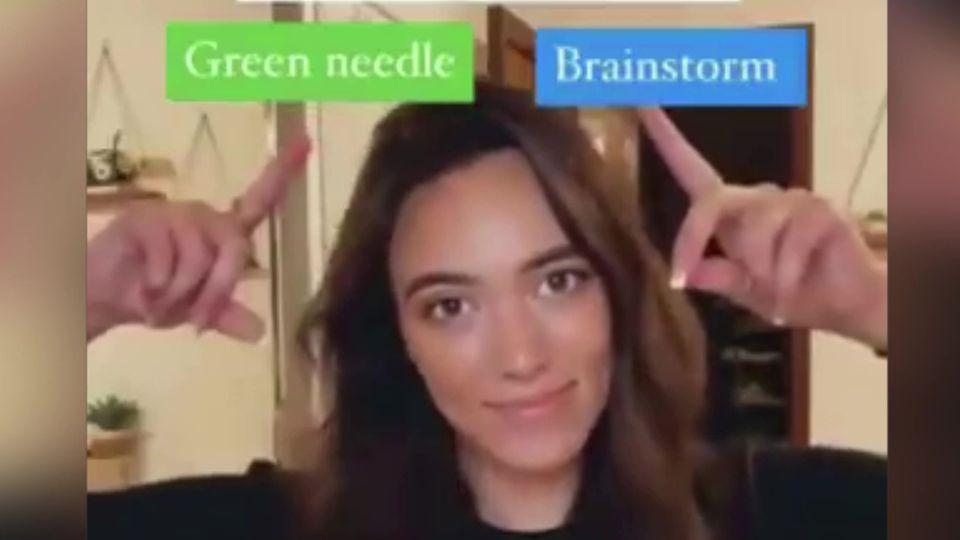 """Green Needle"" oder ""Brainstorm"" – diese Sinnestäuschung lässt Millionen Internet-User verzweifeln"