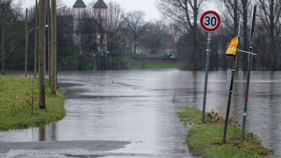 Das Hochwasser des Rheins überflutet Wiesen und Äcker bei Köln-Rheinkassel.