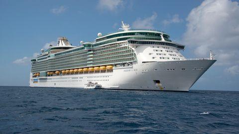 "Das Kreuzfahrtschiff ""Freedom of the Seas"""
