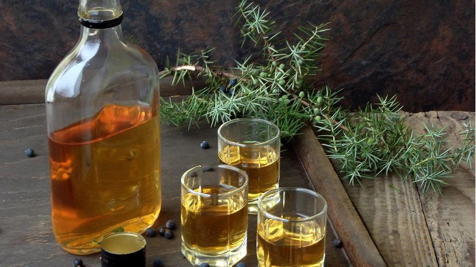 Gin Sets für Zuhause: Drei Gläser mit Bathtub-Gin stehen neben einer halbvollen Flasche