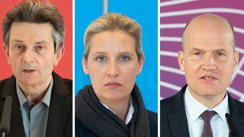 Rolf Mützenich, Alice Weidel undRalph Brinkhaus
