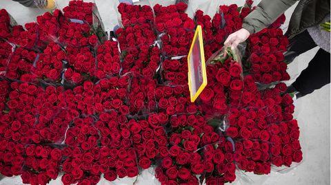 Zum Valentinstag sollten sie lieber rote Rose alsHaushaltsgeräteoder Sextoys verschenken