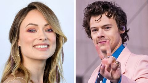Olivia Wilde, Harry Styles