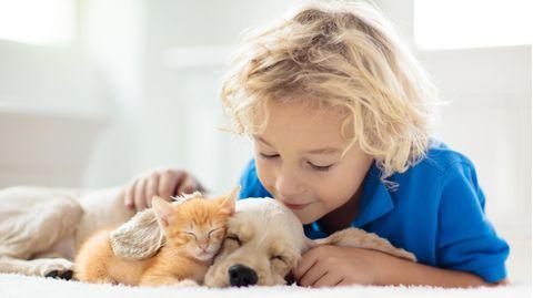 Ein Junge liegt mit einem kleinen Hund und einer kleinen Katze auf dem Bett