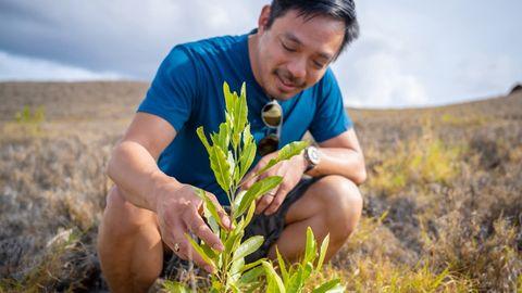 Ex-Reddit-Chef Yishan Wong investiert jetzt in Baumpflanz-Projekt