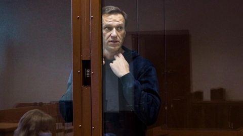 Der russische Oppositionsaktivist Alexej Nawalny
