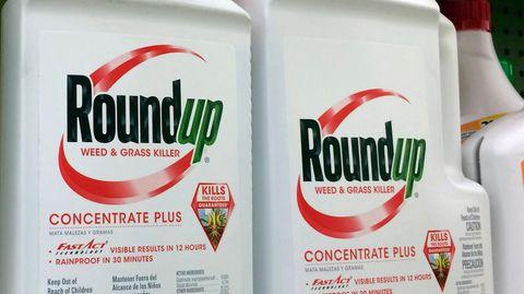 Behälter mit Roundup, ein glyphosathaltiges Unkrautvernichtungsmittel von Monsanto, stehen in einem Regal in einem Baumarkt