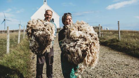 Berühmte Wolle: Deryk, 53, und Hollie Shaw, 49, mit zwei frisch geschorenen Büscheln Schafwolle. Sie ist die Grundlage für die weltberühmte Strickmode von der Insel – eine wichtige Einnahmequelle für die Bewohner