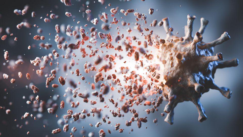 Zerfallendes Coronavirus