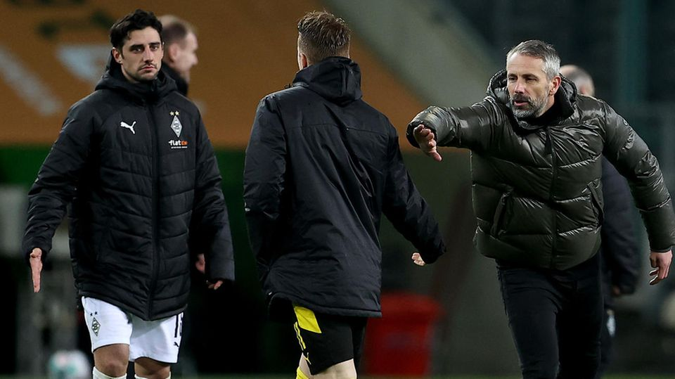 Borussia Mönchengladbach Dortmund Rose
