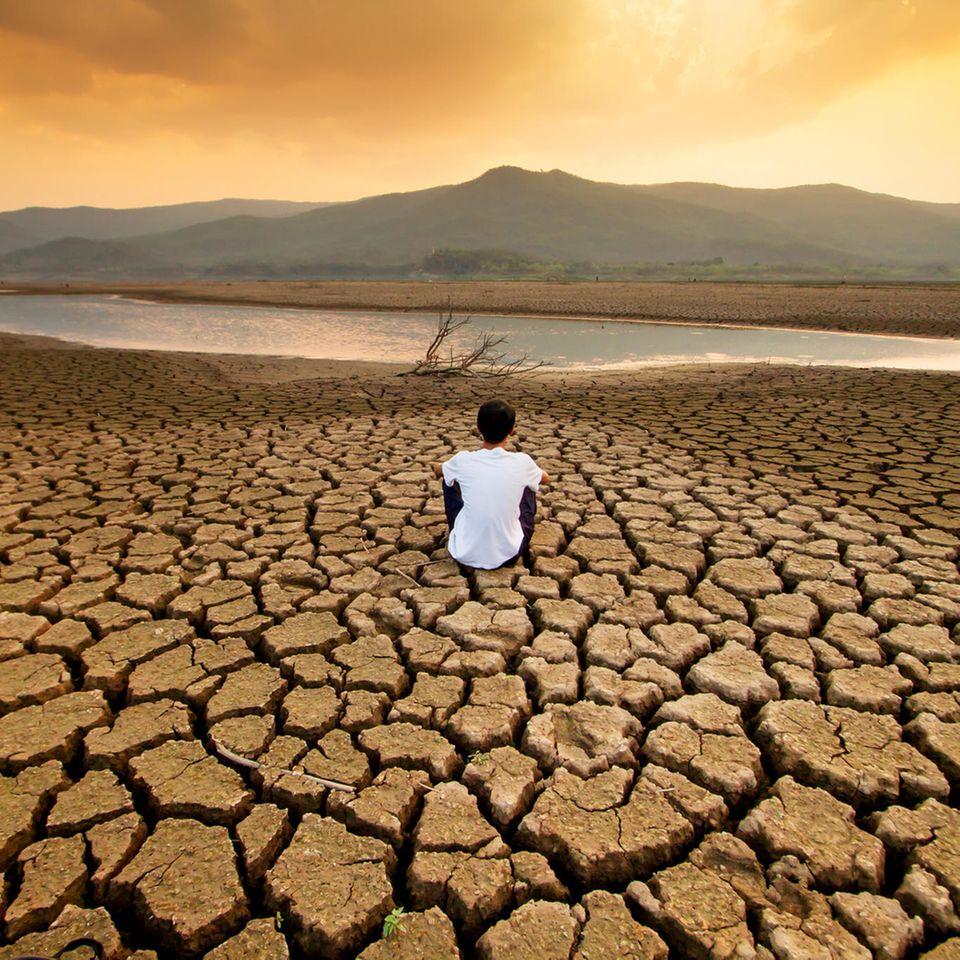 Internationaler Energiespartag : Diese Öko-Thriller wirken besser als alle Energiespartipps