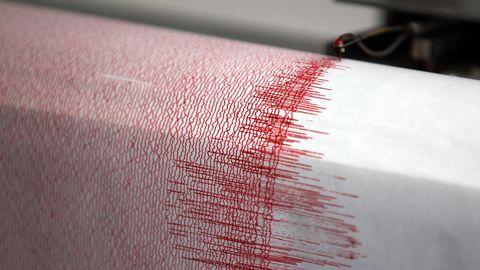 Ein Seismograph einerErdbebenwarte verzeichnet Ausschläge (Archivfoto)