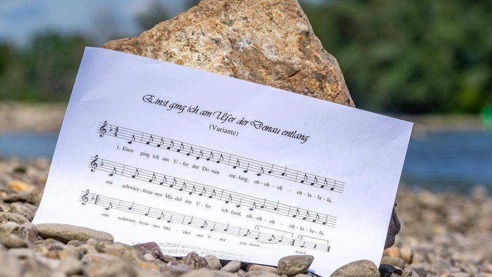 Text des Donaulieds