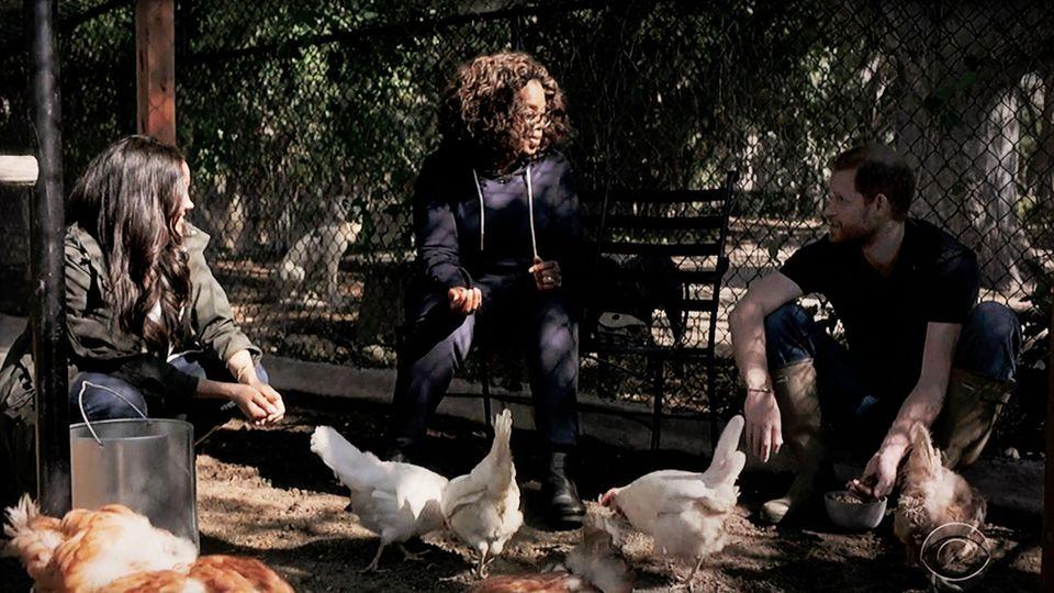 Herzogin Meghan, Oprah Winfrey und Prinz Harry