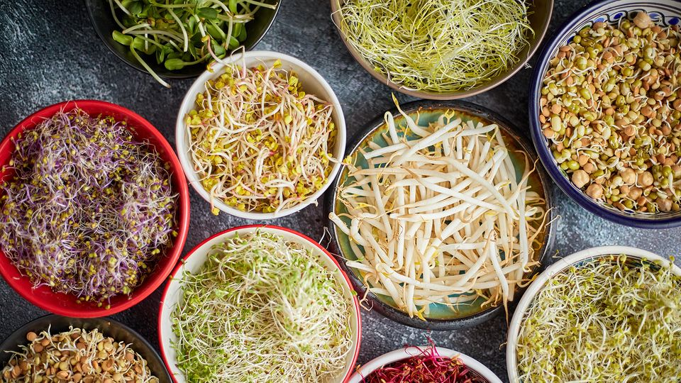 Neuer Food-Trend Microgreens (Symbolbild)