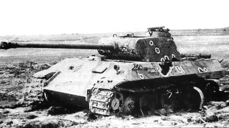 Abgeschossener Panther.
