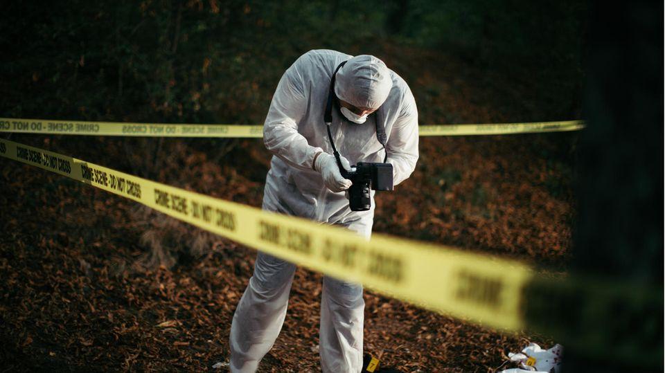 Die Polizei hat menschliche Überreste in einem Wald in Ashford in Großbritannien entdeckt (Symbolbild)