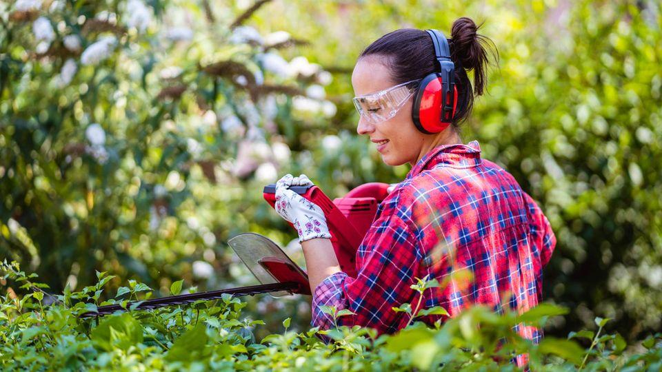 Media Markt Angebote: Eine Frau schneidet die Hecke mit einer Heckenschere