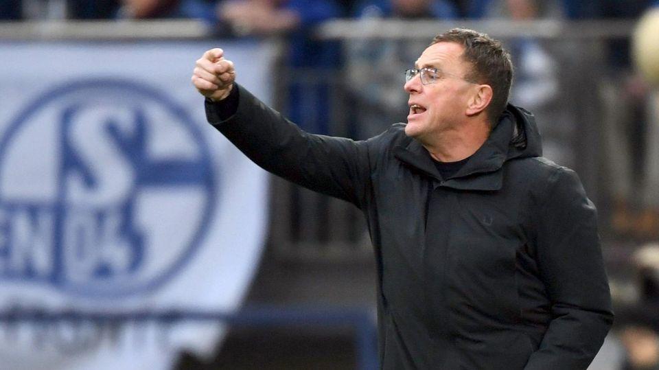 Kommt er als Retter? Ralf Rangnick ist heißer Kandidat auf den Sportdirektorenposten auf Schalke