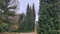 Idylle im Altonaer Volkspark