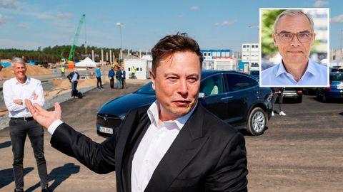Musk Tesla Schmiechen