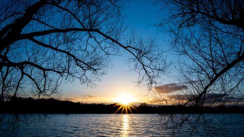 Die Sonne geht hinter Bäumen am Maschsee unter