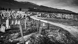 """""""Das sind die Flüchtlingsgräber am Rand des Friedhofs von Bihac. Manche der Menschen, die hier begraben liegen, sind in den Wäldern entlang der Grenze erfroren. Andere wurden tot aus dem Grenzfluss geborgen. Sie alle waren mit viel Hoffnung von zu Hause aufgebrochen. Doch das verfluchten Ende ihrer Reise wurde ein namenloses Grab zehn Kilometer vor der EU-Grenze.  Dieser Anblick macht für mich alle juristischen Feinheiten des Asylrechts, alle Unterscheidungen zwischen Wirtschaftsflüchtlingen und politisch Verfolgten nebensächlich. So ein Ende hat kein Mensch verdient. Der Tod der Menschen, die hier liegen, war vermeidbar. Ich stand vor diesem Ort und dachte: Das müsste doch nicht sein.  Mitte März 2021 machte eine neue Schreckensmeldung aus der Gegend die Runde in den sozialen Medien. Beim Versuch, die Grenze zu überqueren, war eine Gruppe Männer aus Bangladesch in ein Minenfeld geraten. Einer starb, vier wurden schwer verletzt. Kroatische Helfer haben sie geborgen. Es gibt viele Wege, auf den letzten Metern vor der EU-Grenze zu Tode zu kommen."""""""
