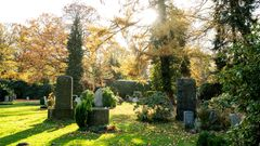 Wer bei einem Friedhof an eine trostlose Toteninsel denkt, wird bei dem Ohlsdorfer Friedhof überrascht sein. Ein Spaziergang durch den größten Parkfriedhof Europas kann zu einerZeitreise in der grünen Natur werden.