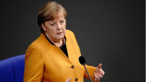 """AfD-Schiedsgerichte: """"Perversion des Rechts"""": Harte Kritik an Einmischung von AfD-Bundesvorstand"""