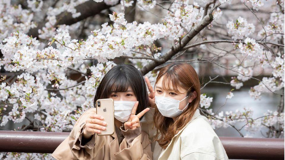 Zwei Frauen fotografieren sich vor einem blühenden Kirschbaum