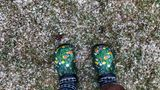 Pokrent, Deutschland.Eine Frau steht mit bunten Gartenschuhen auf einer mit Schnee und Graupel bedeckten Wiese. Mit kühlen Temperaturen, starkem Wind und Schneeschauern zeigt sich der Ostermontag in Norddeutschland von seiner unfreundlichen Seite.