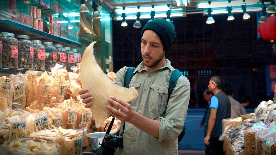 AliTabrizi inspiziert Haifischflossen auf einem asiatischen Fischmarkt