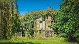 Hier holt sich die Natur alles zurück: Ein überwuchertes Gewächshaus in Kirchwerder bei Hamburg.