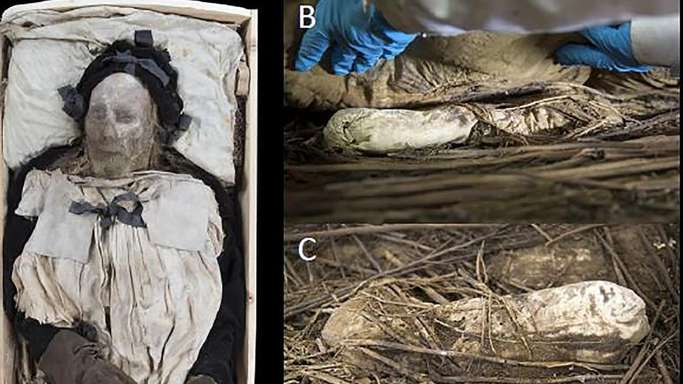 Sehen Sie im Video:Fötus in Sarg von berühmten Bischof entdeckt –wie kam das tote Baby dort hinein?