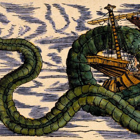 Seemannsgarn : Was steckt hinter zahllosen Seeungeheuer-Mythen? Interessante Theorie aus dem Netz