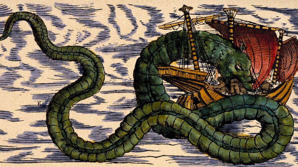 Um Riesenschlangen und andere Meeresungeheuer ranken sich seit Jahrhunderten viele Seemannslegenden