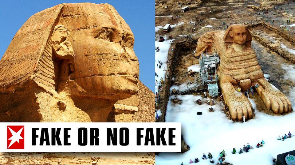 Die Sphinx im Schnee – Ist das Foto ein dreister Fake?