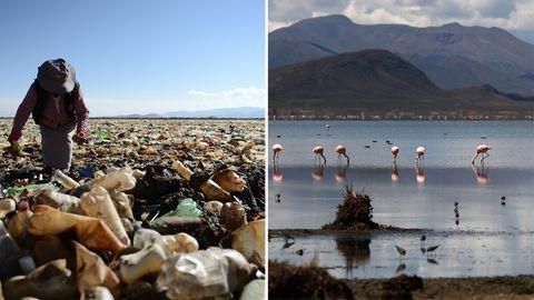 Einstiges Paradies wird zum Ort des Grauens: Ein Meer von Plastik im Uru-Uru-See