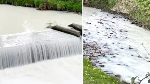 Wales: Fluss färbt sich weiß nach Milchtransporter-Unfall.